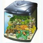 Уход за морским аквариумом