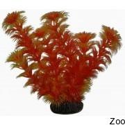 Аквариумное растение Aquatic Nature (12877)