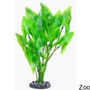 Аквариумное растение Aquatic Nature (12908)