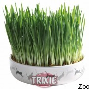 Trixie тарелка керамическая для травы 15:4см + семена для прорасчивания 50гр (42341)