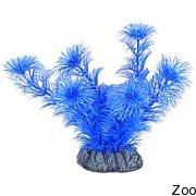 Аквариумное растение Aquatic Nature (12879)