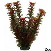 Аквариумное растение Aquatic Nature (12914)
