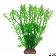 Аквариумное растение Aquatic Nature (12882)