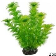 Аквариумное растение Aquatic Nature (12886)