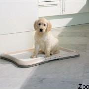 Savic Puppy Trainer туалет для щенков и взрослых собак маленьких пород.