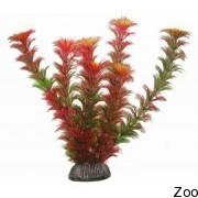 Аквариумное растение Aquatic Nature (12887)