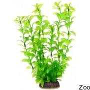 Аквариумное растение Aquatic Nature (12919)