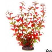 Аквариумное растение Aquatic Nature (12920)