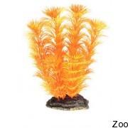 Аквариумное растение Aquatic Nature (12858)