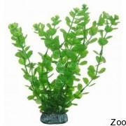 Аквариумное растение Aquatic Nature (12902)