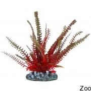 Аквариумное растение Aquatic Nature (12859)