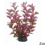 Аквариумное растение Aquatic Nature (12904)
