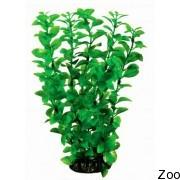Аквариумное растение Aquatic Nature (12928)